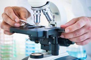 микроскопическое исследование