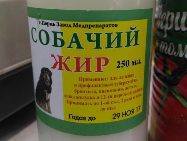 Как растопить собачий жир в домашних условиях. Собачий жир лечит кашель быстро и мягко. Собачий жир: лечебные свойства и применение при кашле