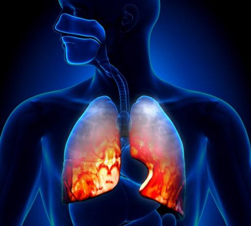 Лейкоциты при пневмонии у взрослых
