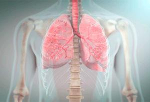 вентиляция легких