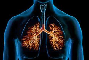бронхообструктивные заболевания