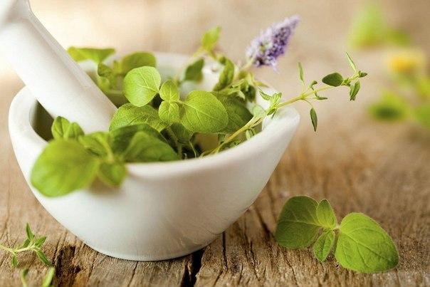 Что помогает от астмы