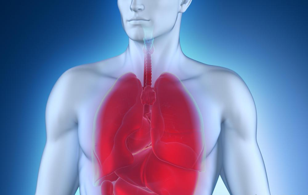 Как человек заболевает пневмонией