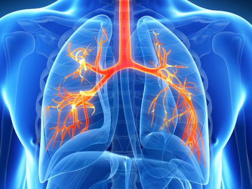 Лечение пневмонии в стационаре схемы лечения