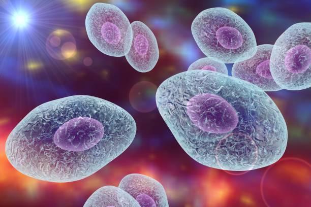 Антибиотики от пневмонии при вич — Лечение ВИЧ и СПИД