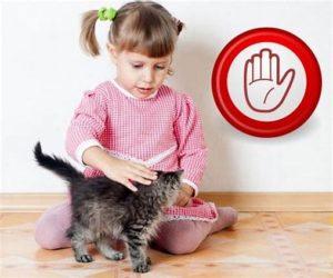 Ограничить контакт с домашними животными